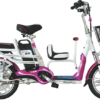 Family electric bike 681