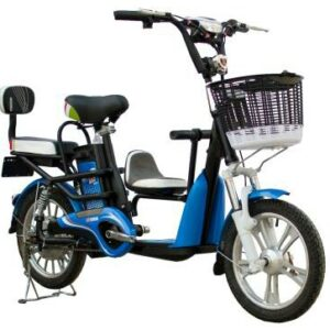Family electric bike
