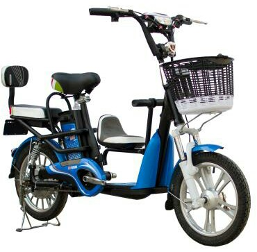 Family electric bike